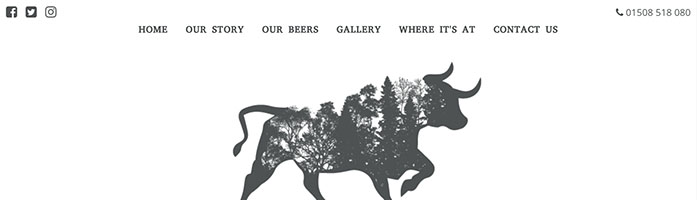 bull of the woods brewing co