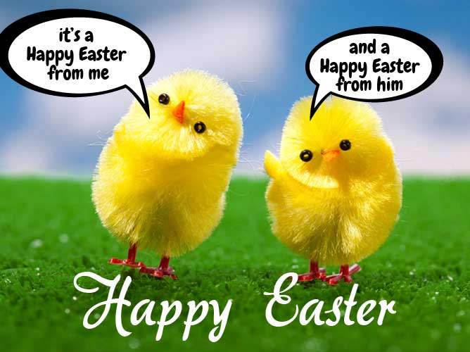 Happy Easter from Superia Commerce
