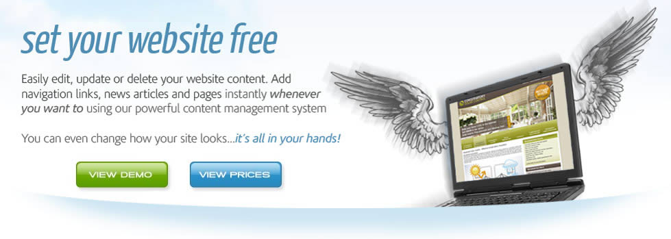 Affordable CMS Websites - Web Content Management System
